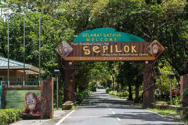 Sepilok-Rehabilitation-Centre