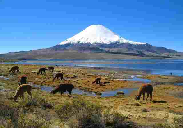 Lauca-National-Park