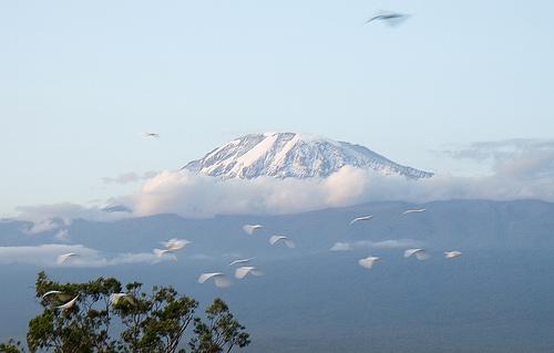 Mount Kilimanjaro photo