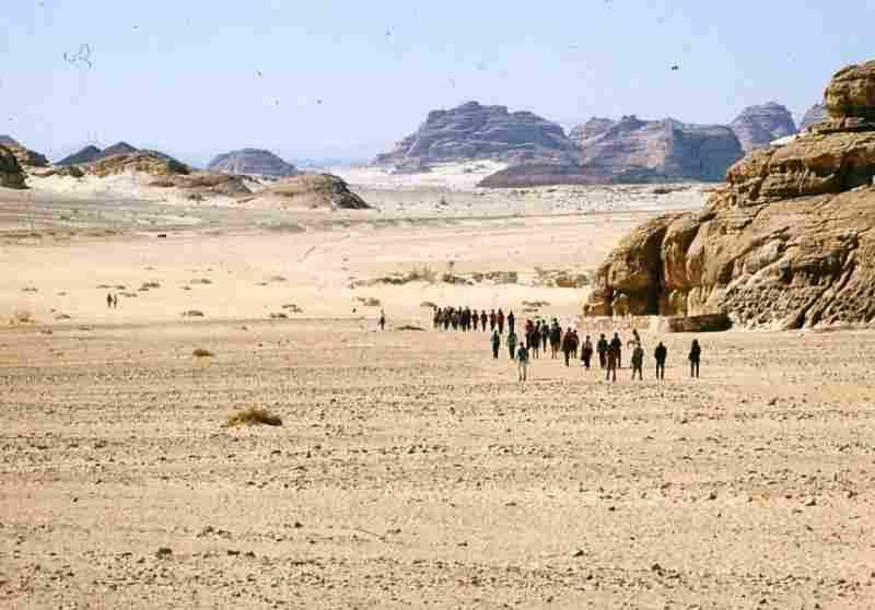 Sinai-Peninsula
