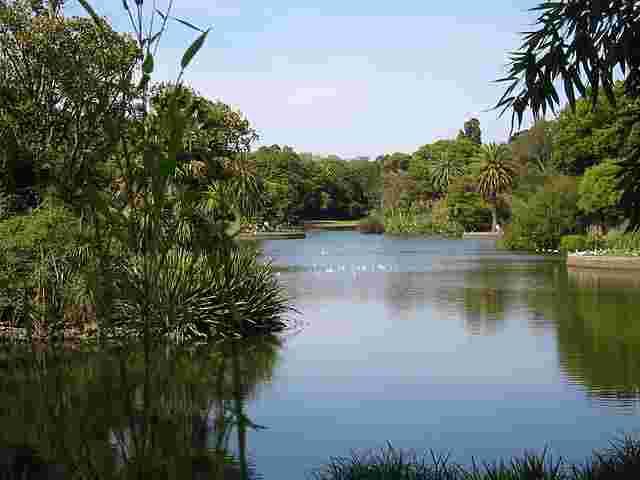 the-Royal-Botanic-Gardens-Melbourne